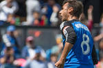 The early contenders for the 2016 Supporters' Shield