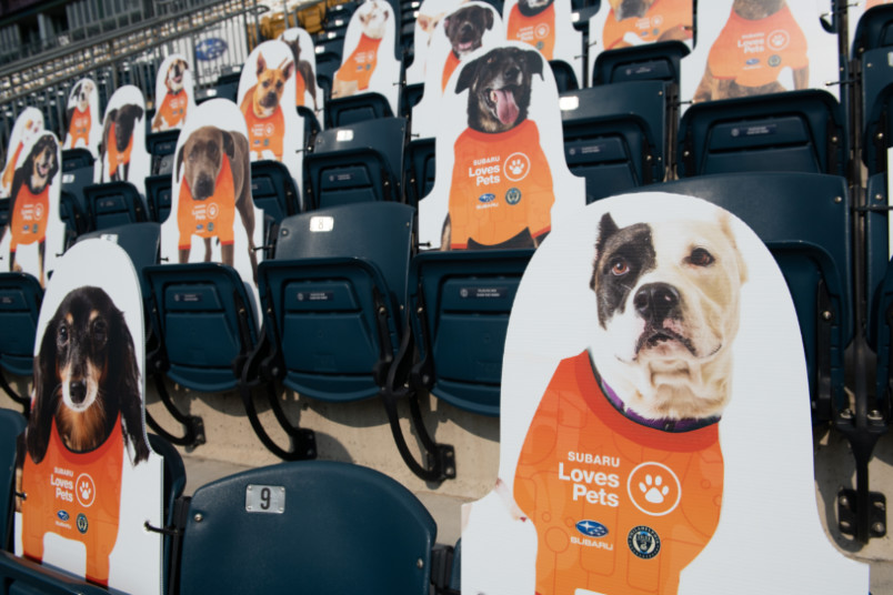 cutouts of adoptable dogs in the seats at philadelphia union stadium